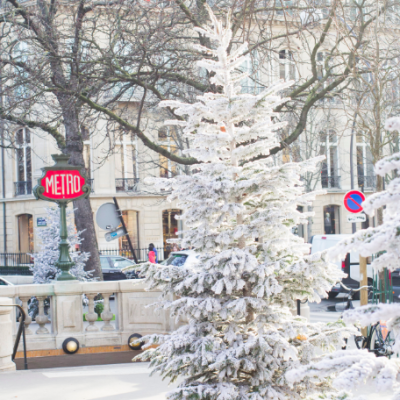 WinterWonderLand Champs Elysees